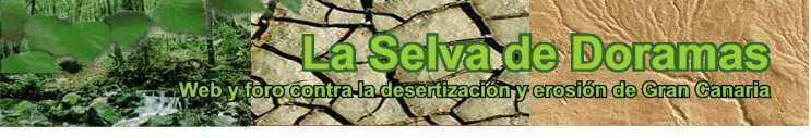 Web y foro contra la desertizaci�n, el cambio clim�tico y erosi�n en las Islas Canarias